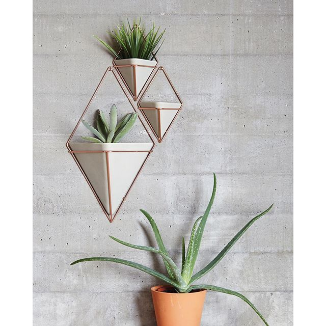 umbra trigg wall vessel in copper and concrete finish use to store office items or