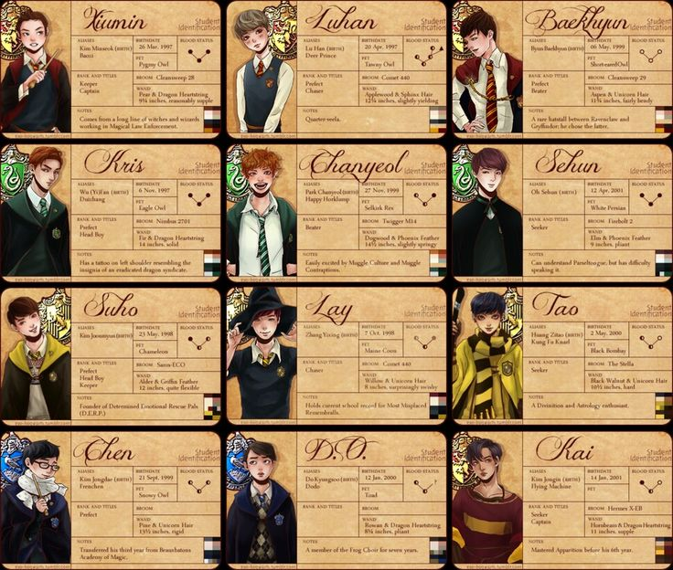 HARRY POTTER EXO!!!!!!!