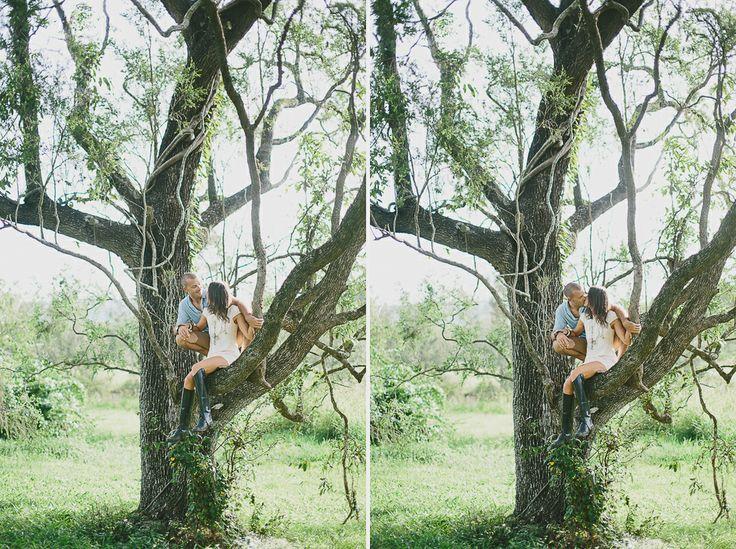 #engagement #wedding #couplesshoot #bride #bridetobe #groom #groomtobe #inlove #wearethetsudons #photography #engagementphotoshoot #weddingphotography #farm #goldcoast #gettingmarried #tree #hinterland  #river #riverbank #climbingtrees