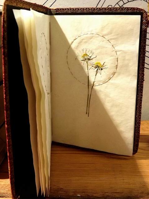 Inspired by the Immortelles, I made small books with pressed flowers for an exhibition in Aberteifi/Cardigan.  Pressed flowers and gold stitch on tea stained paper. The cover is made from the cover of an old broken book, which has lovely gold detail around the edge.