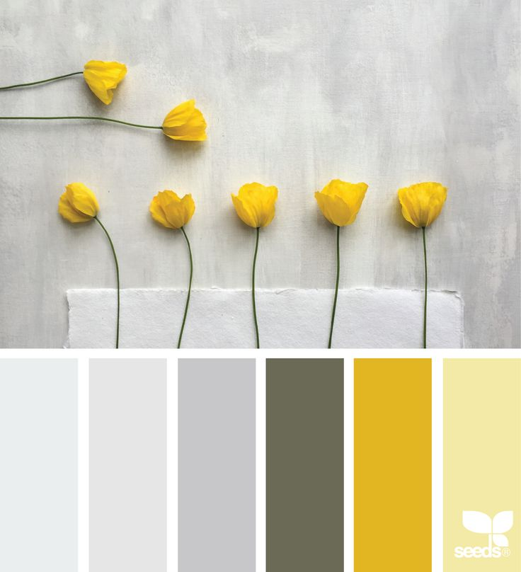 25 Best Ideas About Pale Yellow Walls On Pinterest