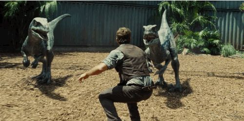 "And here is Chris Pratt…taming some Velociraptors? | The Second ""Jurassic World"" Trailer Reveals A Scary New Dinosaur"