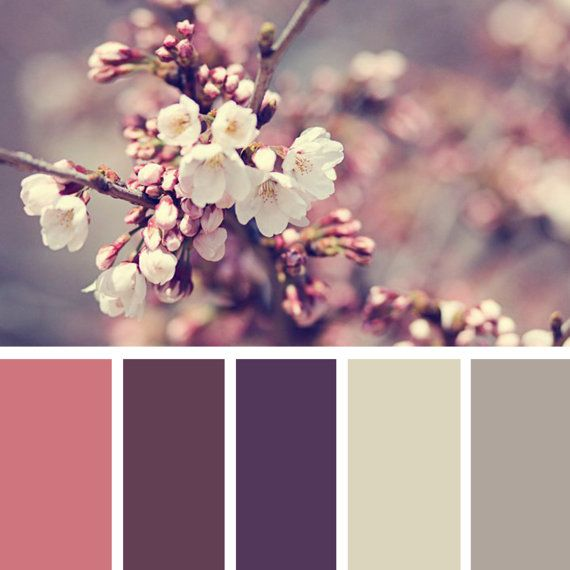 60 OFF SALE  Digital Color Board Template  20x by thepaperpegasus, $2.00