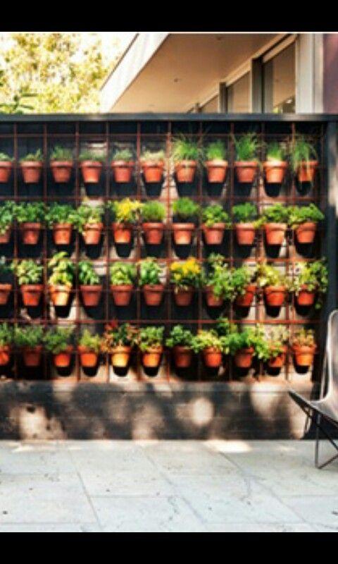 Kruidenrek van betongaas aan de muur gemaakt en daaraan bloempotjes met kruiden…