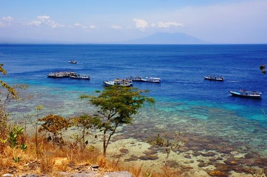 Pristine: Menjangan Island is an attractive tourist destination due to its magnificent underwater life. (Photo by Radity...