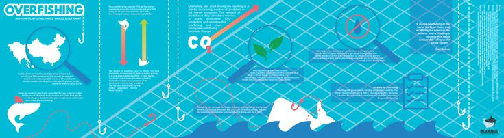 Overfishing Infographic - https://www.designideas.pics/overfishing-infographic/