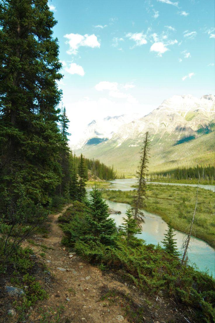 Wanderlust, Trail, Hiking, Jasper National Park