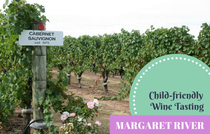A round-up of the five best family-friendly wineries in the Margaret River.