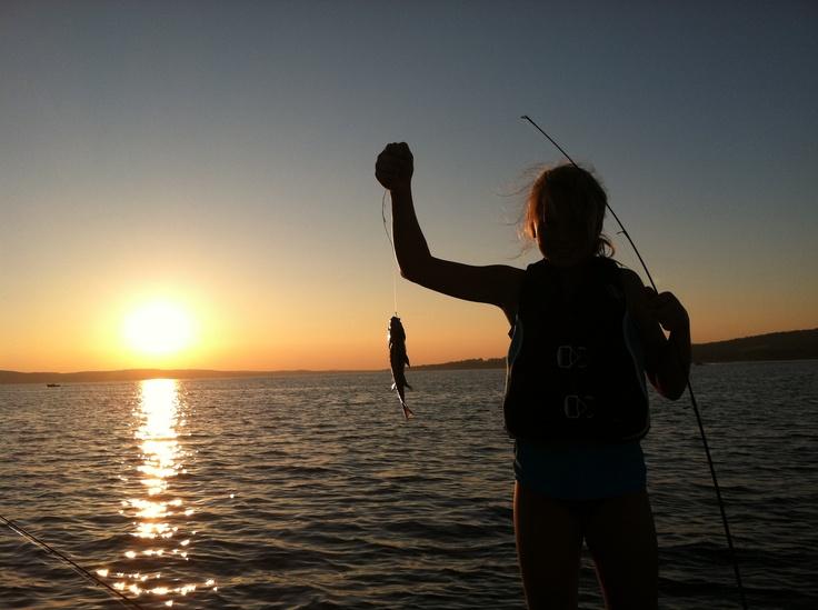1000 images about chautauqua ny on pinterest lakes for Chautauqua lake fishing report