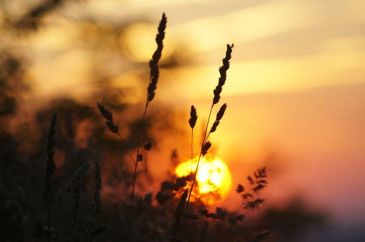 Sunset by Arek Woźniak on 500px