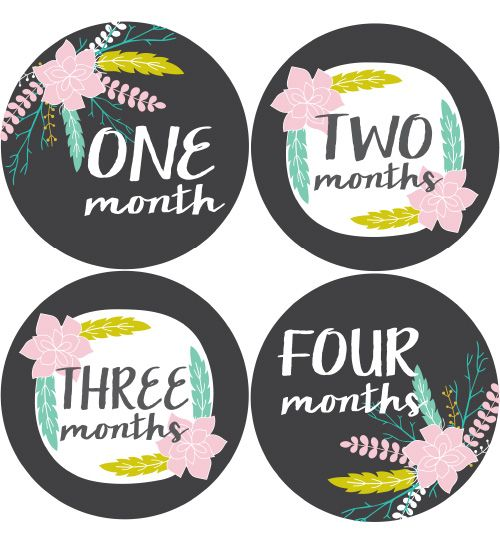 Floral Baby Month Stickers Girls