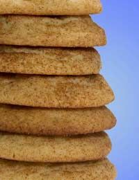Sugar Free Recipes- Sugar Free  Flapjacks and Biscuits Recipes (Spicy, Cinnamon and Apricot, Ginger)