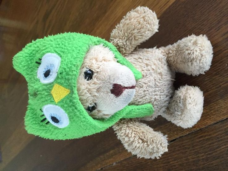 Found on 23 May. 2016 @ Pierce St, Birmingham, MI. Teddy bear with green owl hat found in parking structure stairwell. Visit: https://whiteboomerang.com/lostteddy/msg/bzdryz (Posted by Meghan on 23 May. 2016)