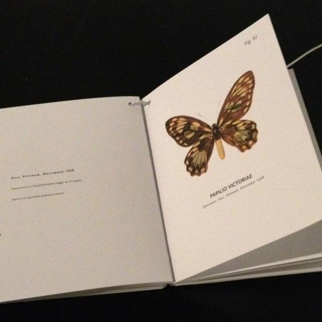 Peter Holst Henckel - World of butterflies . Arken Muséum