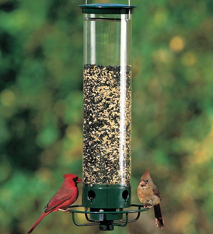 Yankee Flipper® Bird Feeder   Finally, those furry little seed robbers have met their match! The motor-driven, weight-activated Yankee Flipper Bird Feeder welcomes songbirds, but gives those pesky squirrels a trip through the air.