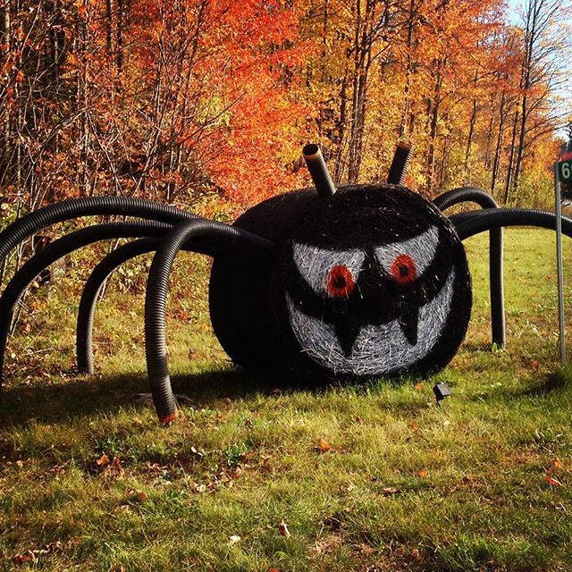 #HappyHalloween everyone! If you haven't had a chance yet, there's still time to pick up your last minute #pumpkins @drysdalestreefarm, @chappellfarms, @nicholynfarms, @barriehillfarms, @roundsranch and @bgreenhouses before the little ghosts & goblins come knocking on your doors tonight! #trickortreat
