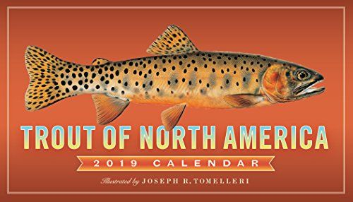 Trout of North America 2019 Calendar - TROUT OF NORTH AMERICA showcases the arresting and astonishingly lifelike fish illustrations of nature artist Joseph R. Tomelleri. There's a fish to admire every month, like the fascinating Kokanee Salmon, who turns flaming red (and develops a humpback!) during spawning time, or the Arctic Grayli...