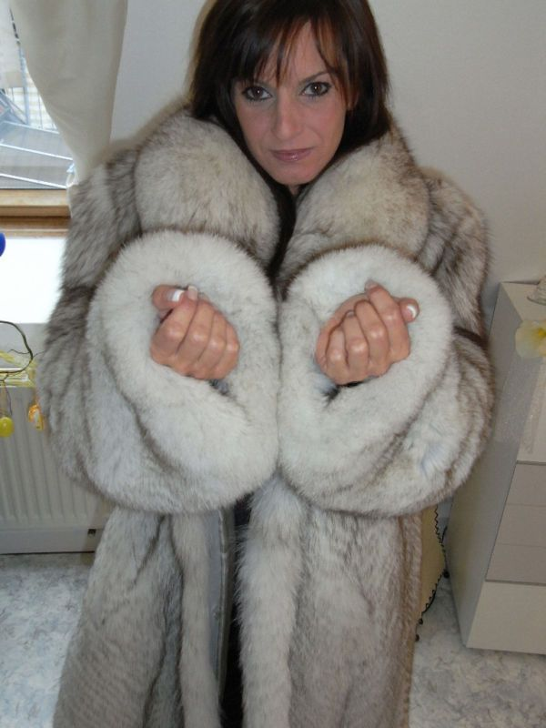 Chinchilla For Sale >> this gives me a VERY naughty idea.... | Fur coat, Fur, Fur ...