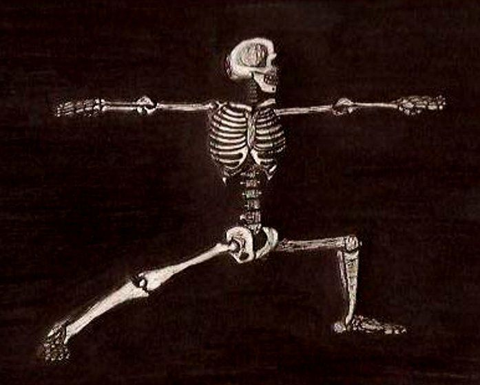 16 Best Images About Skeleton Yoga On Pinterest Yoga
