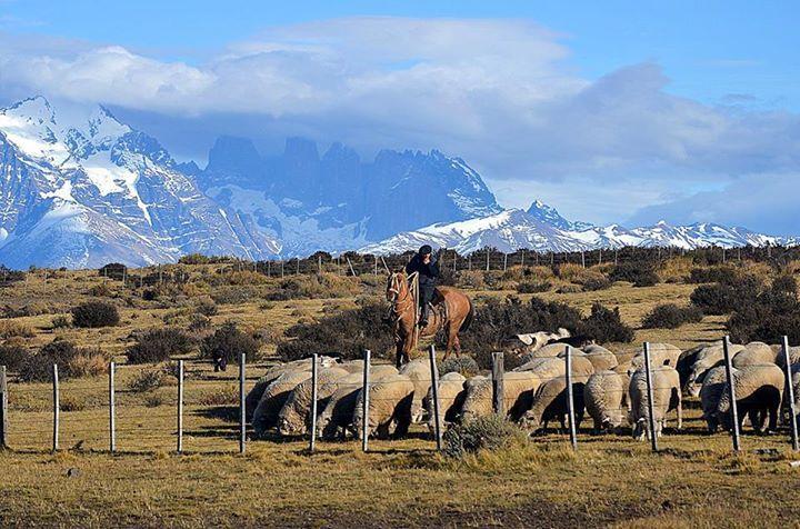 Gaucho #Patagonia #TorresDelPaine