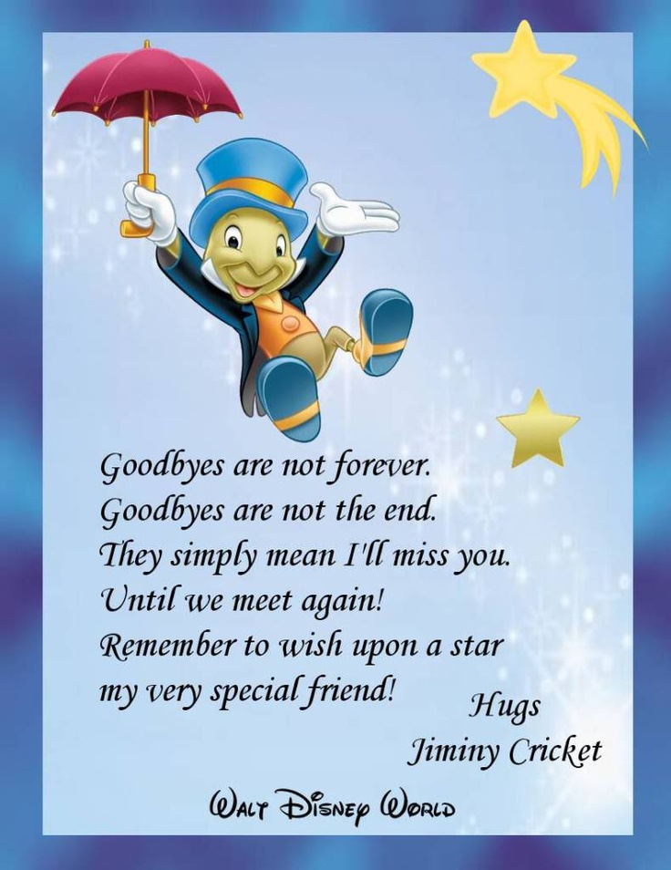 goodbyes are not forever until we meet again