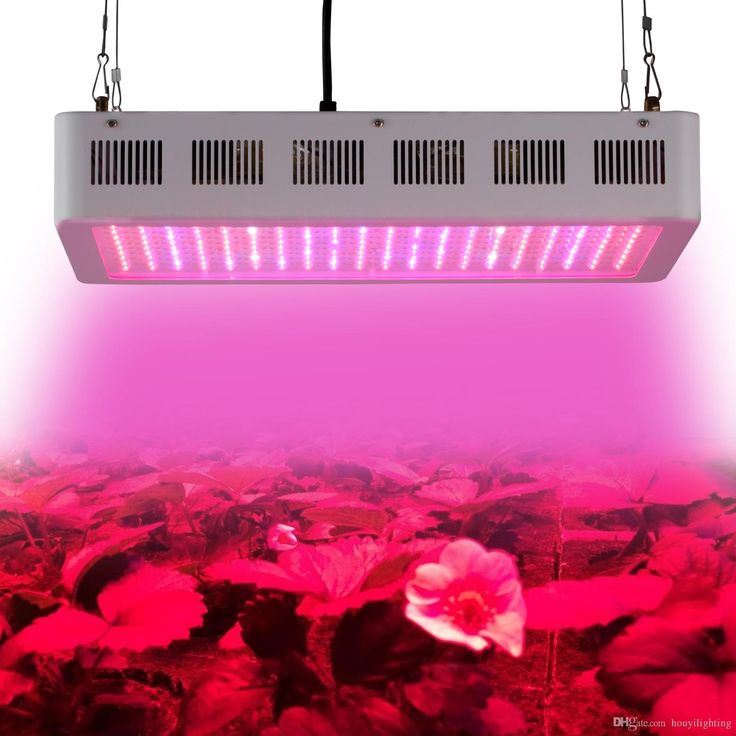 Cheap Led Grow Lights Professional 600w Led Grow Light X 3w High Power Full Spectrum Hydroponic Led Lamp For Indoor Greenhouse Tent Plant Grow & Flowering 600 Watt Grow Light From Houyilighting, $226  | Dhgate.Com  http://www.dhgate.com/product/factory-direct-sell-full-spectrum-led-grow/206459532.html#s1-0-1a;searl|66695870