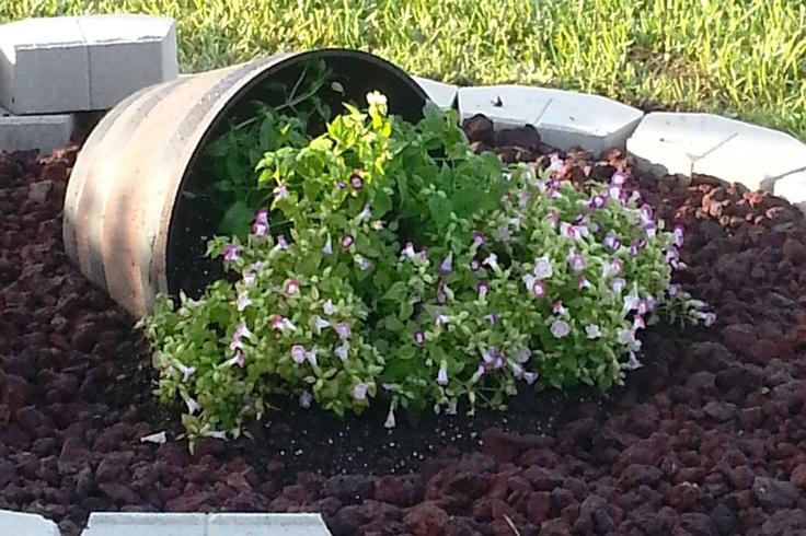 72 best Garden images on Pinterest Flowers Flower gardening and