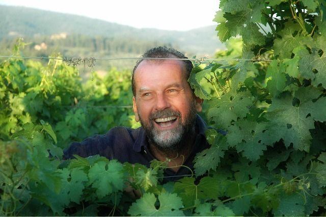 Alessandro among the vineyards..  his natural habitat