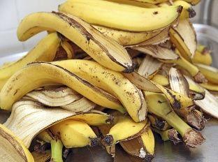 Ťažko tomu uveriť, ale banánové šupky sú doslova nabité prospešnými látkami! Preto je veľká škoda, ak putujú rovno do koša! Poslúži vám ako skvelý pomocník pri zdravotných neduhoch.