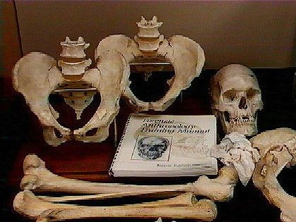Accredited Forensic Anthropology Degree Programs