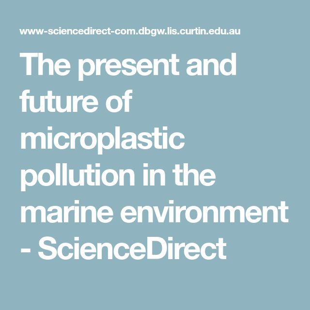 The present and future of microplastic pollution in the marine environment - ScienceDirect