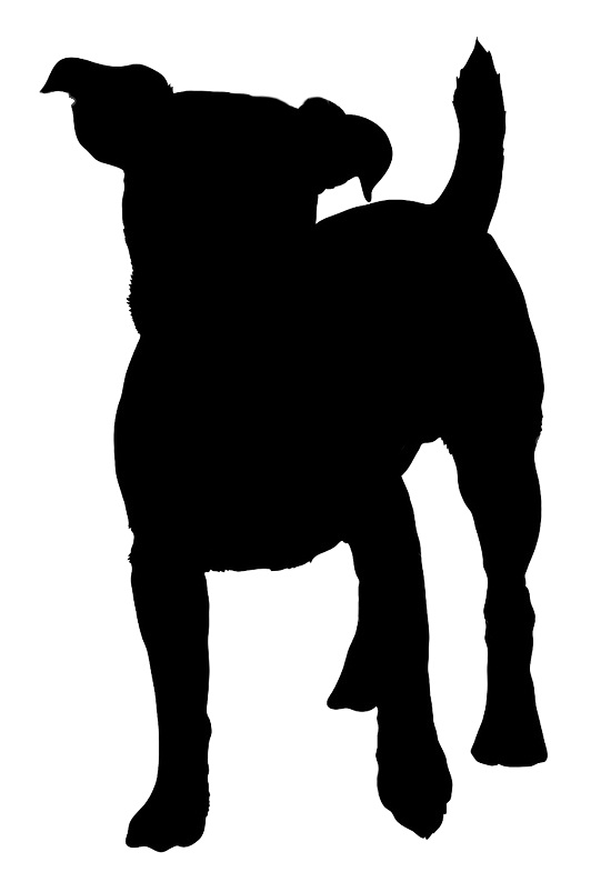 249 best dog outlines images on pinterest silhouettes cat art and rh pinterest com