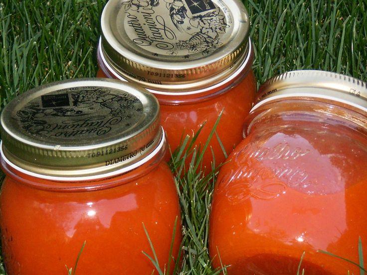 Aprikosen Confituren