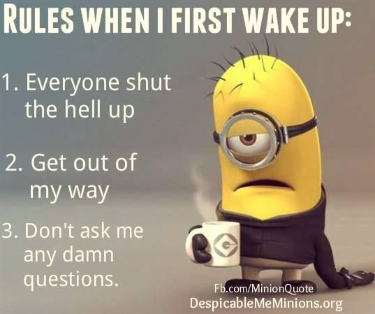 Funny Wake Up Quotes | Rules when i first wake up - Minion Quotes