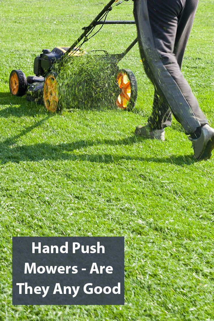 5 Best Push Lawn Mowers To Dominate Your Yard 2020 Images Prices Push Lawn Mower Lawn Gas Lawn Mower