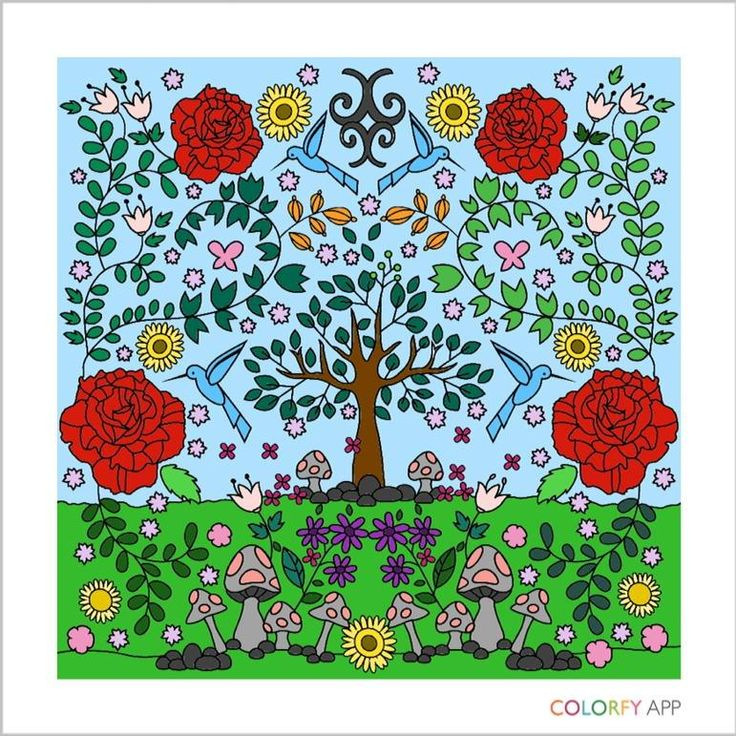 colorfy coloring book adults