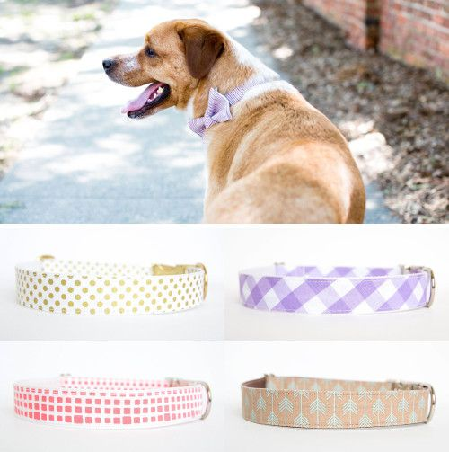 Handmade Dog Collar Bow Ties and Flower Collars by Pecan Pie Puppies - Dog Milk