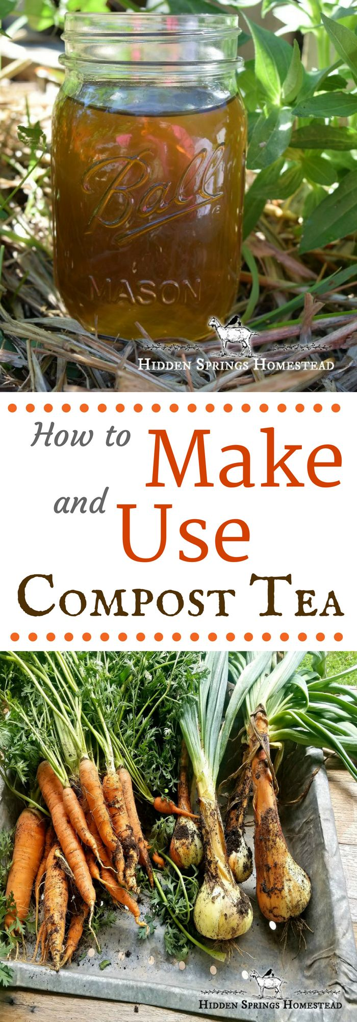Let It Rot!: The Gardener's Guide to Composting (Third ...