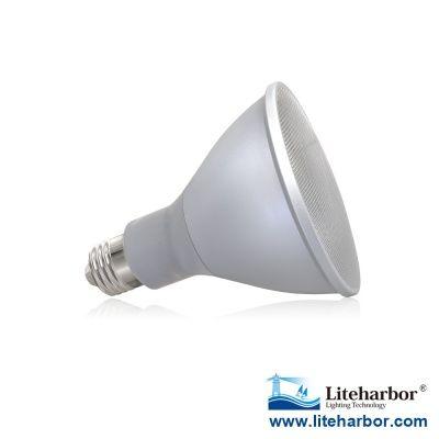 High Efficiency Traditional Halogen Style Dimmable LED Par30 bulb  http://www.liteharbor.com/LED-bulbs/36_1115_High-Efficiency-Traditional-Halogen-Style-Dimmable-LED-Par30-bulb.html