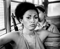 """Pamela Suzette """"Pam"""" Grier is an American actress. She became known in the early 1970s for starring in a string of moderately successful women in prison and blaxploitation films like The Big Bird Cage, Coffy, Foxy Brown and Sheba Baby. Wikipedia"""