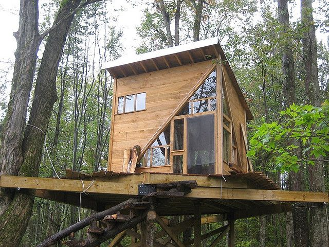 Treehouse / The Green Life <3