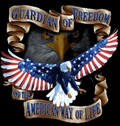 American Bald Eagle: Guardian of Freedom and the American Way of Life