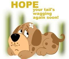 funny get well soon images | Get Well Soon Quotes Graphics