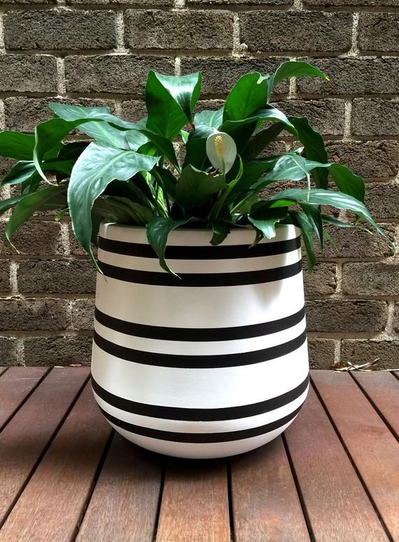 Hand Painted Lightweight Plant Pot In White With Black Stripes