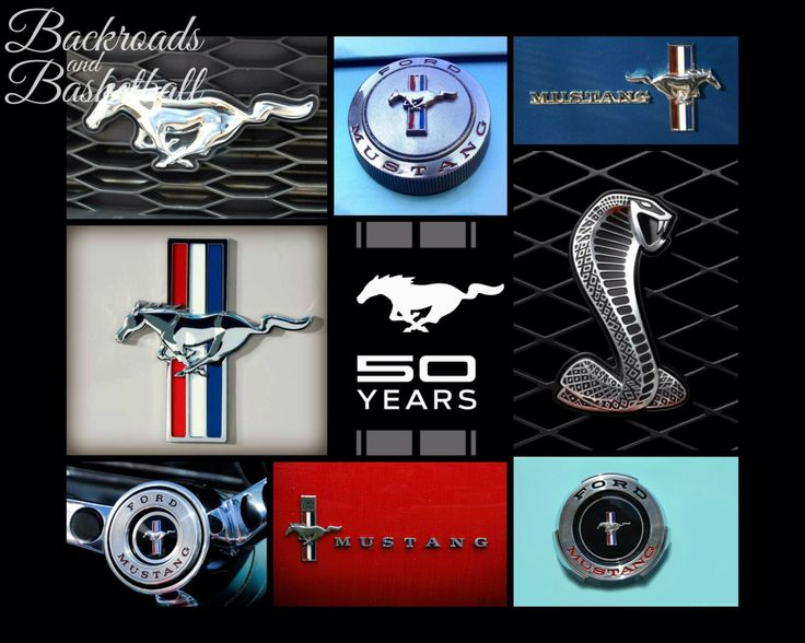 50 years of ford mustang logos collage fine art home decor wall art photo print - Ford Mustang Logo Images