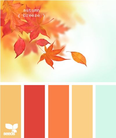 autumn breeze: Colors Combos, Design Seeds, Fall Colors, Paintings Colors, Living Room, Colors Palettes, Colors Schemes, Autumn Breeze, Autumn Colors