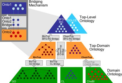 BioTop - A Top-Domain Ontology for the Life Sciences
