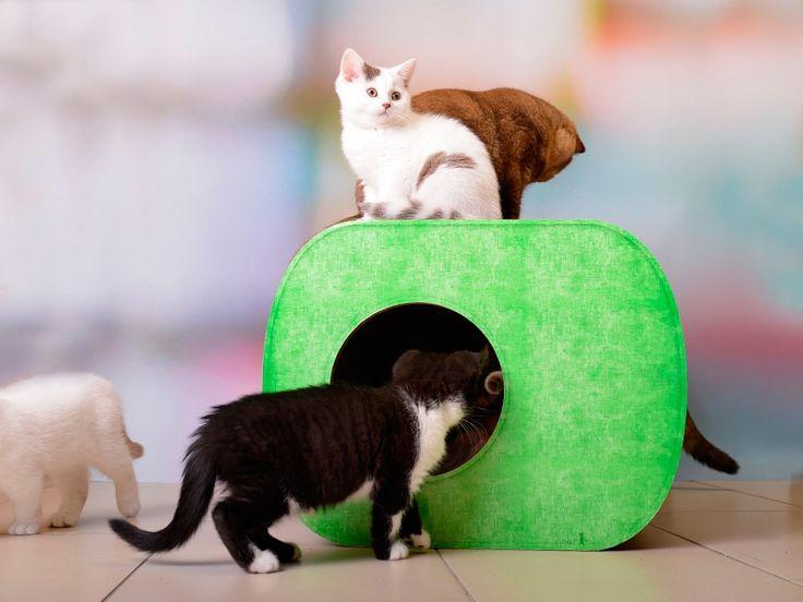 Zugleich Als Gemütlicher Rückzugsort, Schlafplatz, Kratzbaum, Katzenhaus  Und Kratzmöbel Zieht Das Cat On Katzenhaus Aus Wellpappe Jede Katze Magisc.