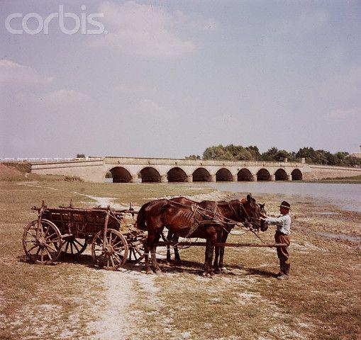 Nine-Holed Bridge
