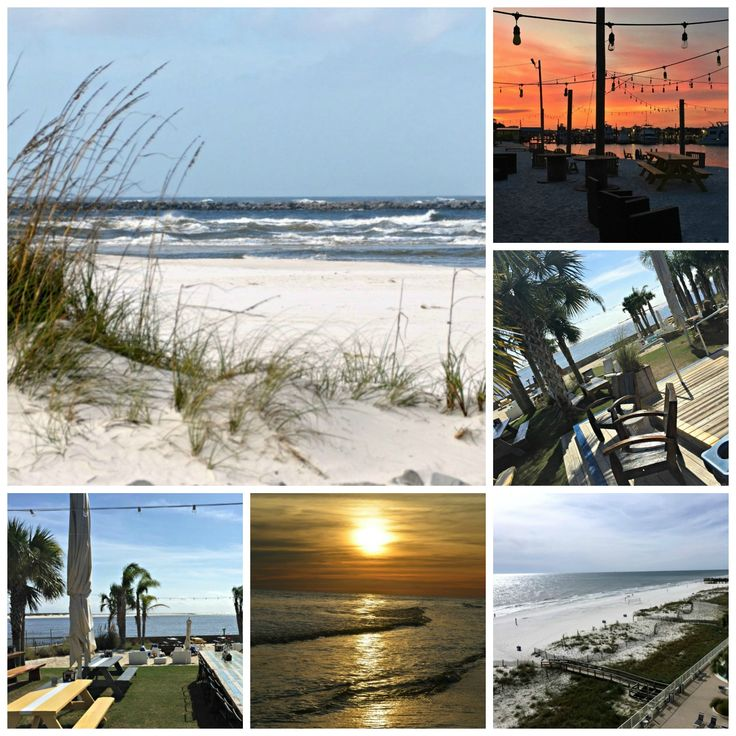 5 Reasons Gulf Shores should be your next Vacation Destination - There you go, just 5 of the many reasons you should make Gulf Shores your next vacation destination. What are you waiting for? via @donnahup
